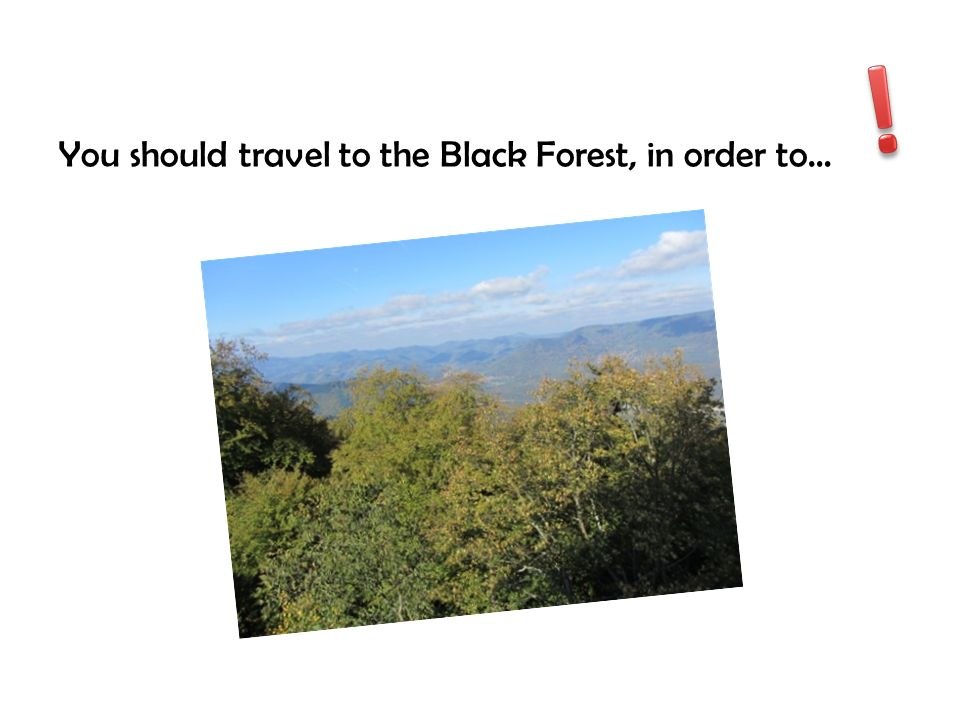 ! You should travel to the Black Forest, in order to…
