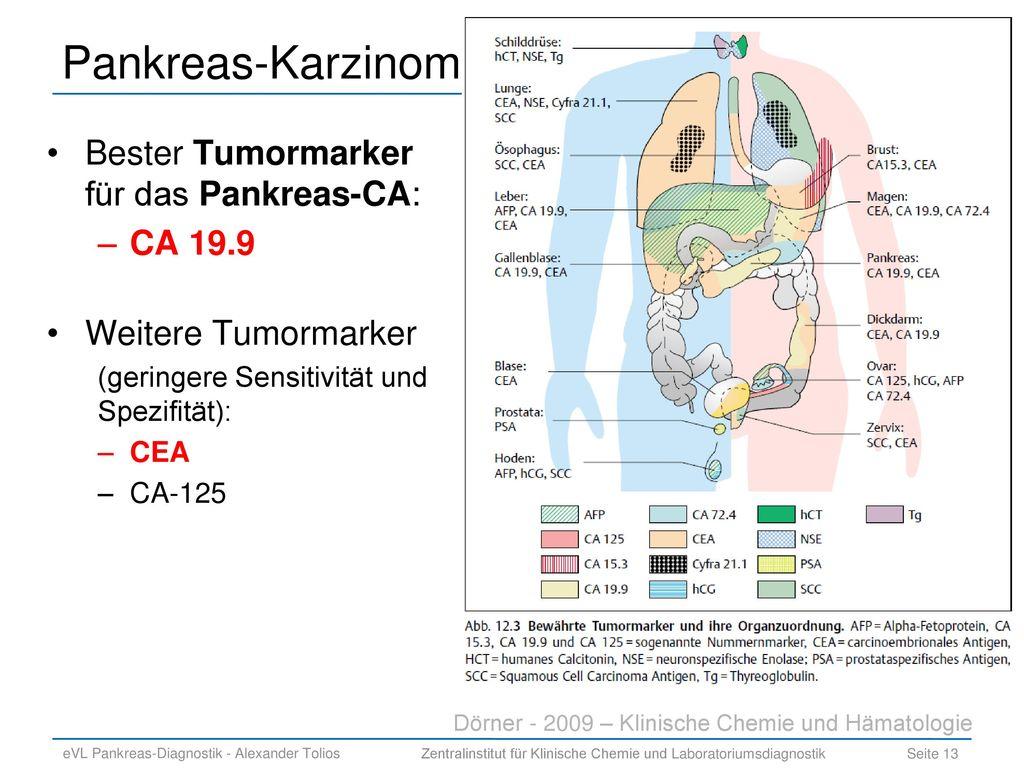 Funktionsstörungen Des Pankreas Ppt Herunterladen