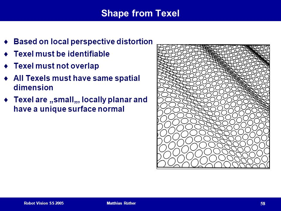 Shape from Texel Based on local perspective distortion