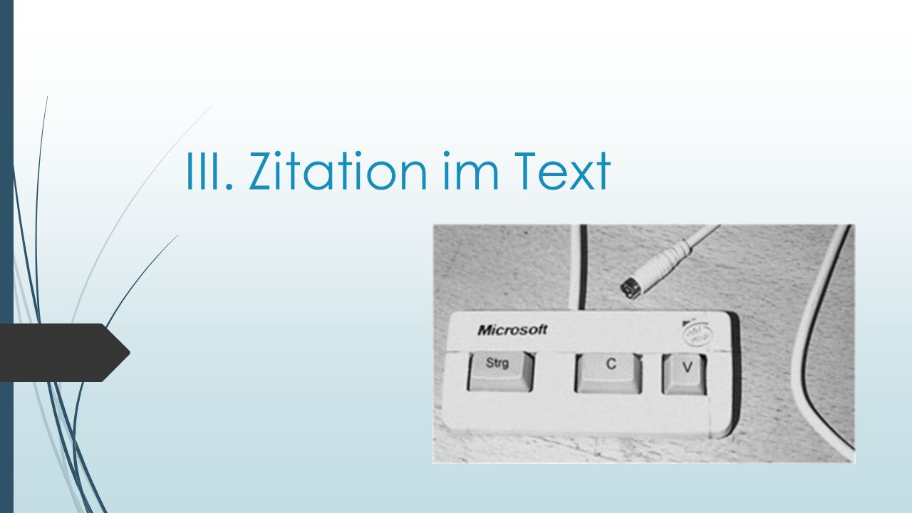 III. Zitation im Text