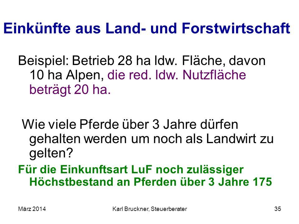 Berühmt Karl Bruckner, Steuerberater - ppt herunterladen @YS_44