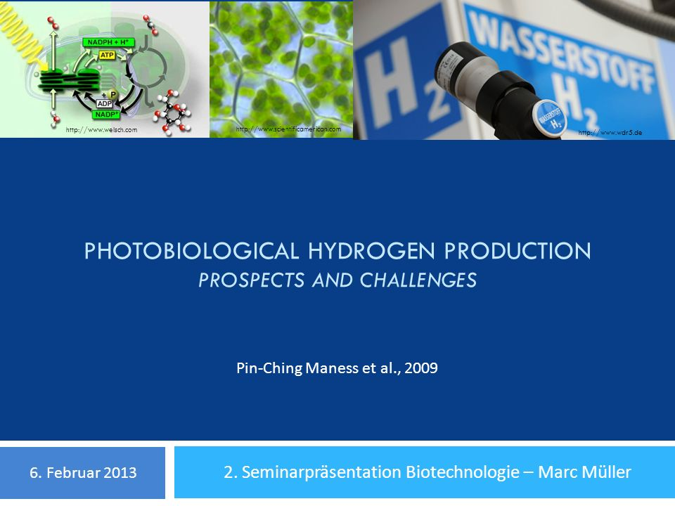 Photobiological Hydrogen Production Prospects and Challenges