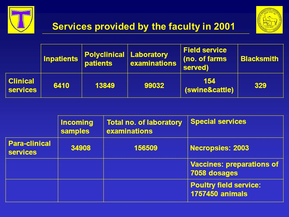 Services provided by the faculty in 2001