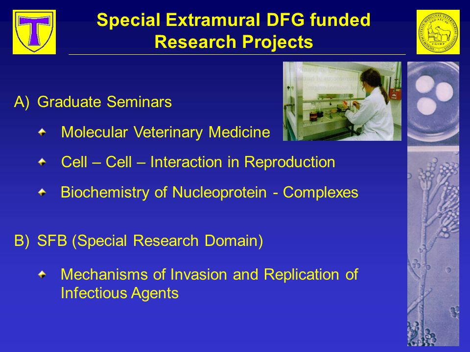 Special Extramural DFG funded Research Projects