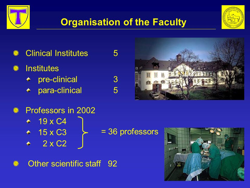 Organisation of the Faculty