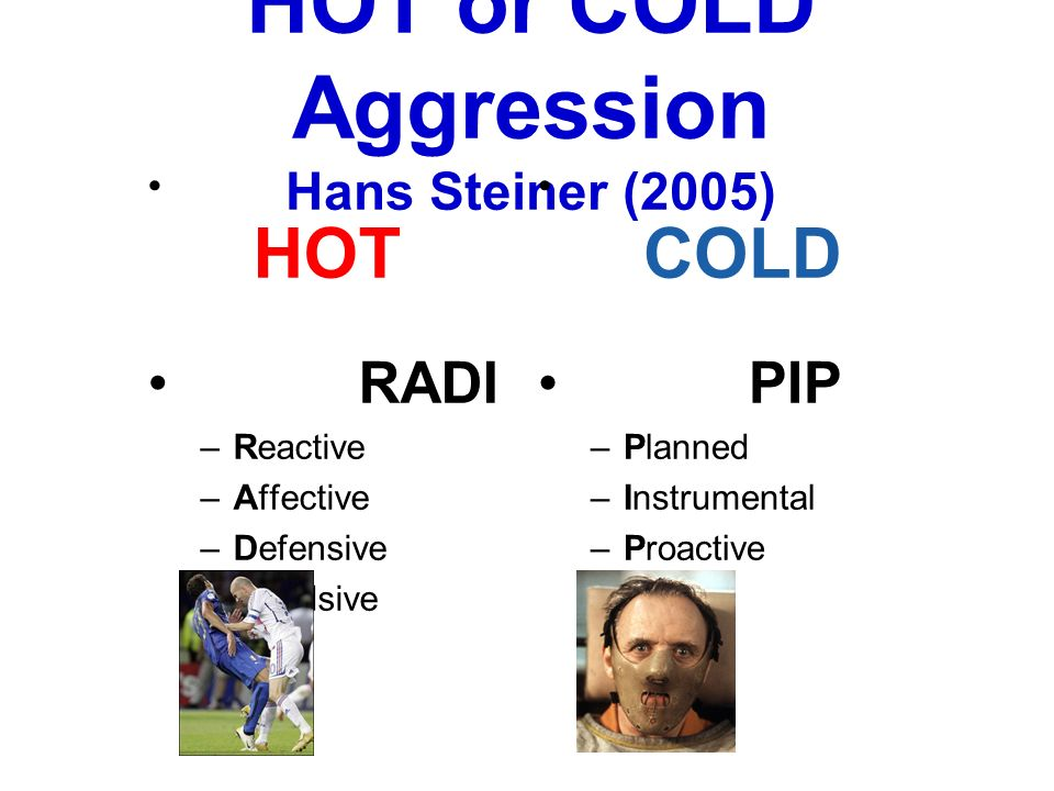 HOT or COLD Aggression Hans Steiner (2005)