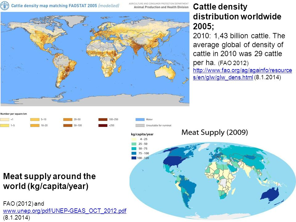 Cattle density distribution worldwide 2005;