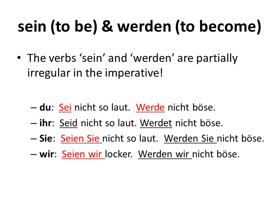 sein (to be) & werden (to become)