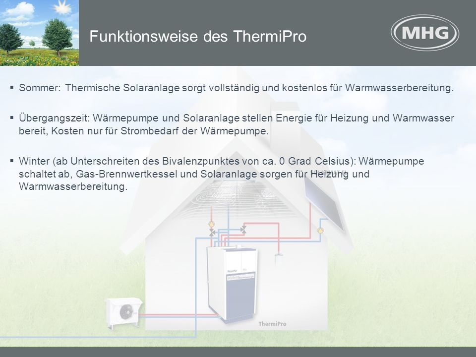Funktionsweise des ThermiPro