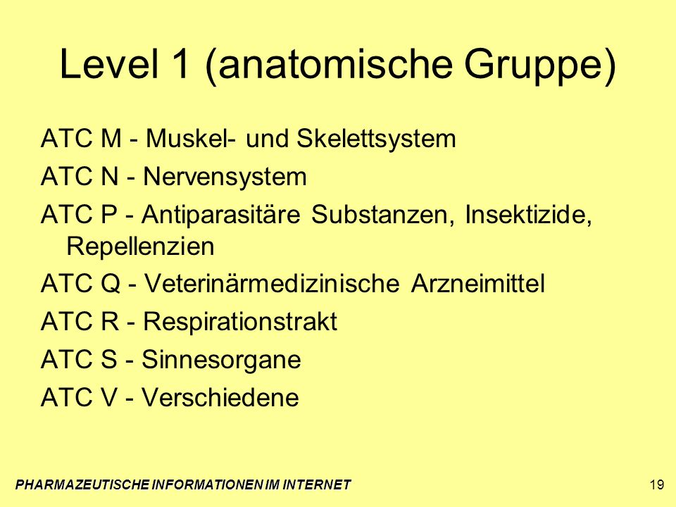 Level 1 (anatomische Gruppe)