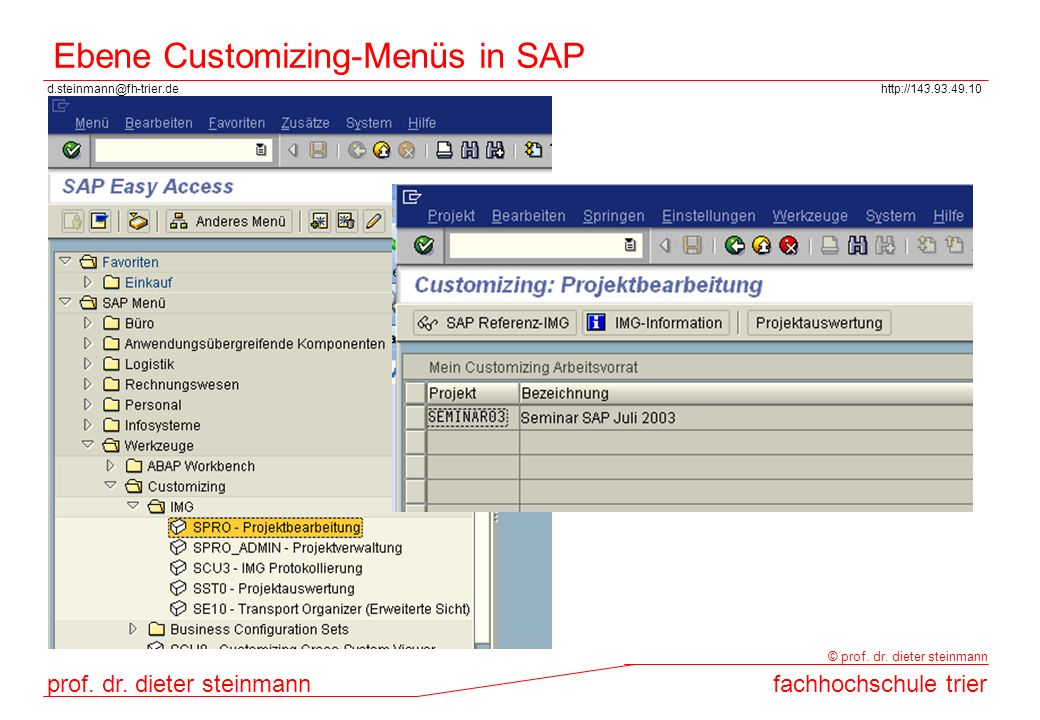 Ebene Customizing-Menüs in SAP