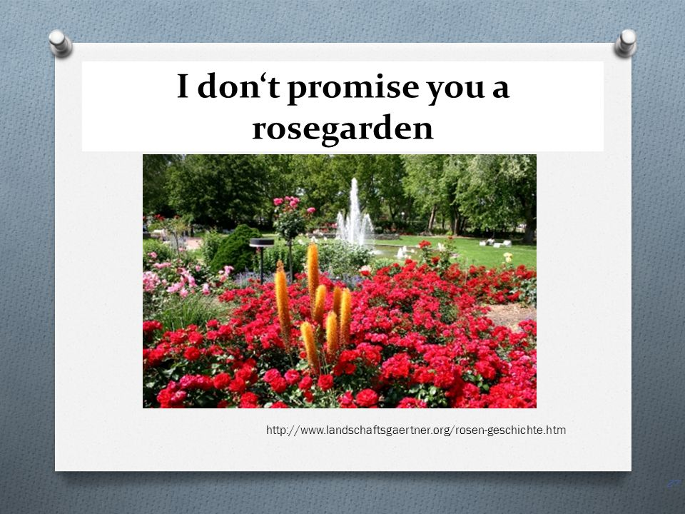 I don't promise you a rosegarden