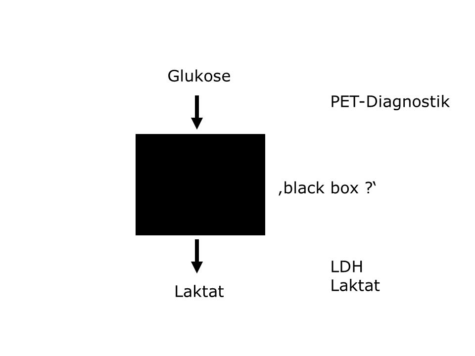 Glukose PET-Diagnostik 'black box ' LDH Laktat Laktat