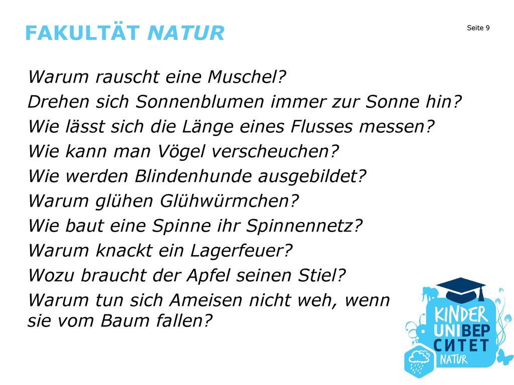 """Kinder, stürmt den Hörsaal und lernt Deutsch!"""" - ppt herunterladen"""