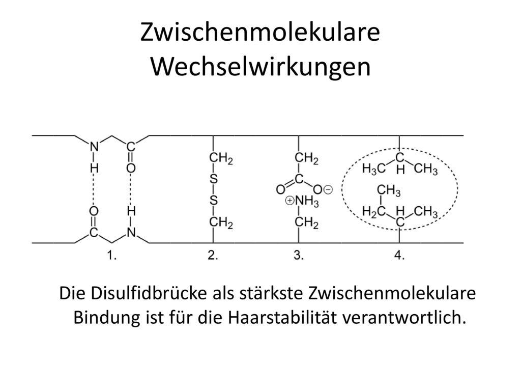 Dauerwelle disulfidbrucken