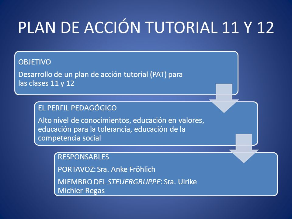 PLAN DE ACCIÓN TUTORIAL 11 Y 12