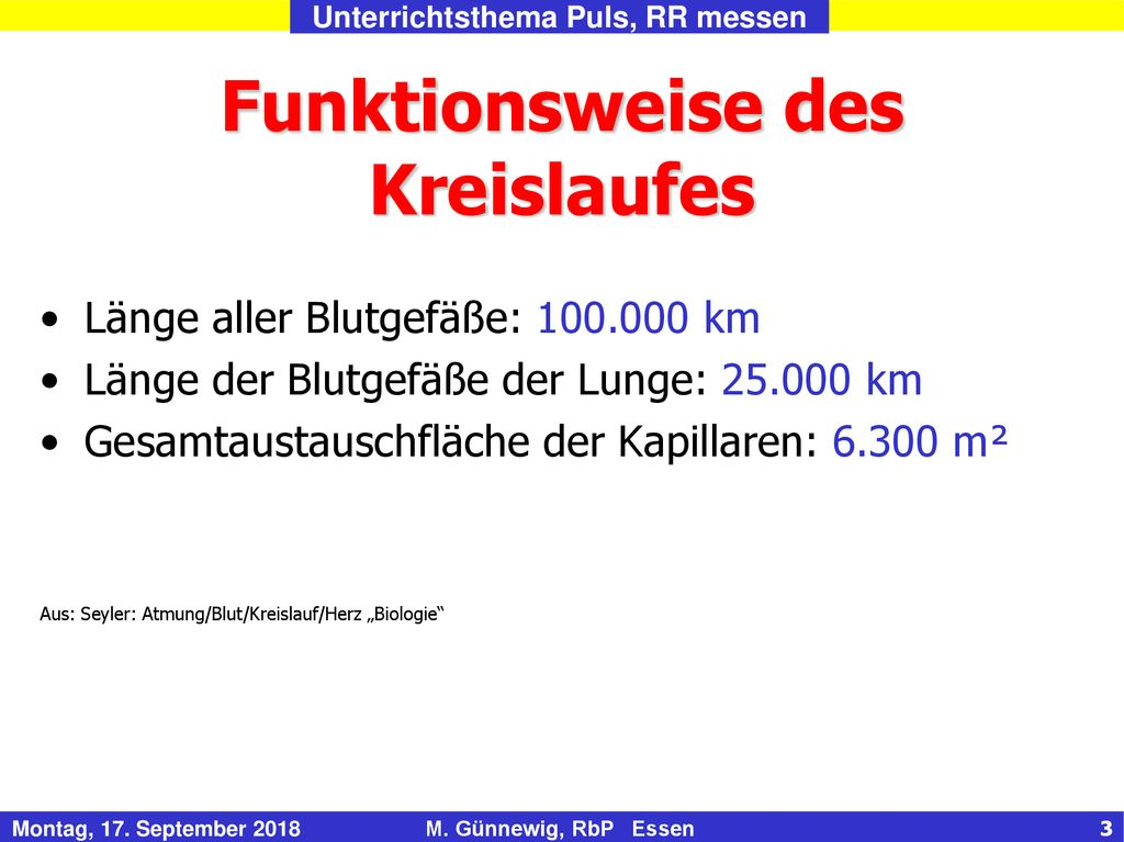 Funktionsweise des Kreislaufes