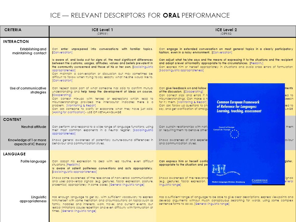 ICE — RELEVANT DESCRIPTORS FOR ORAL PERFORMANCE