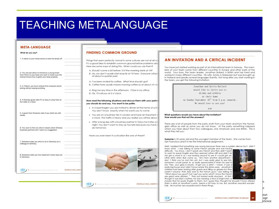 TEACHING METALANGUAGE