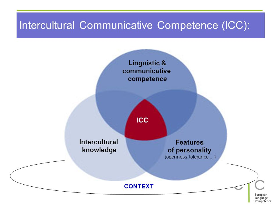 Intercultural Communicative Competence (ICC):