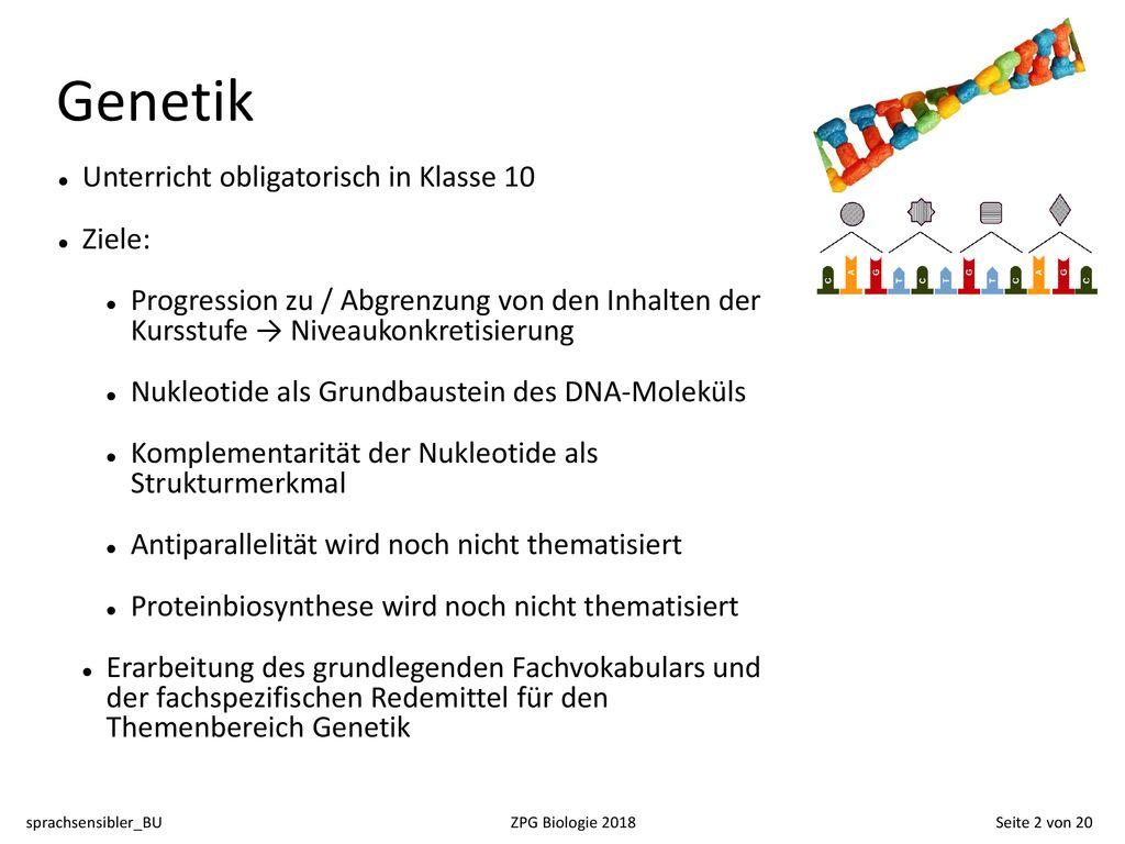Genetik sprachsensibler BU ZPG Biologie Seite 20 von ppt herunterladen