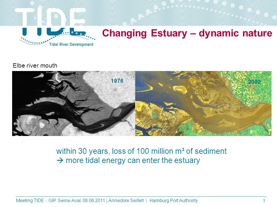 Changing Estuary – dynamic nature