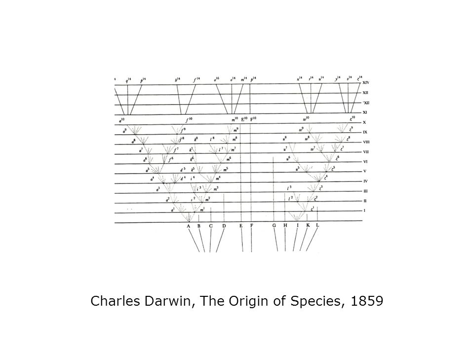 Charles Darwin, The Origin of Species, 1859