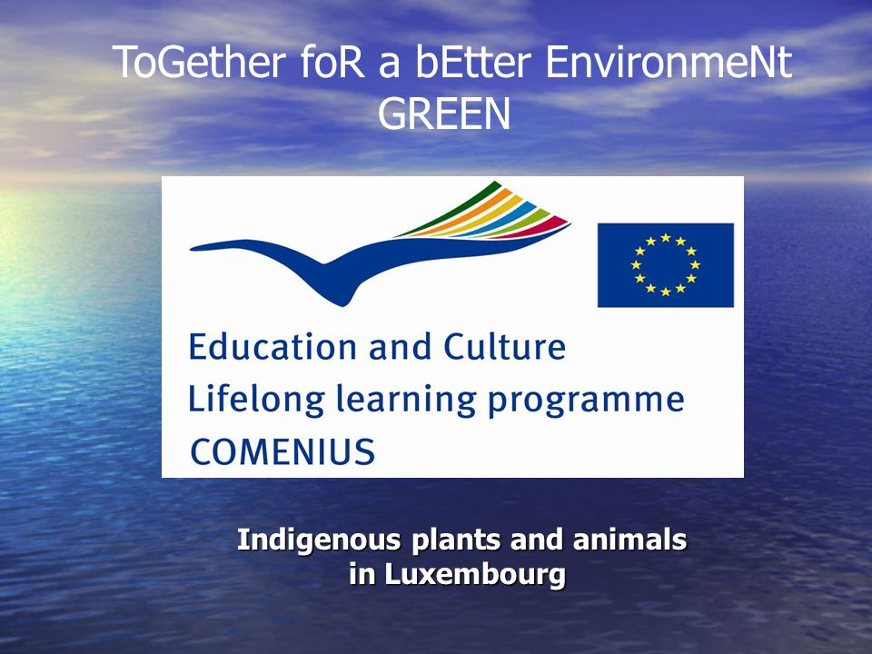 Indigenous plants and animals in Luxembourg