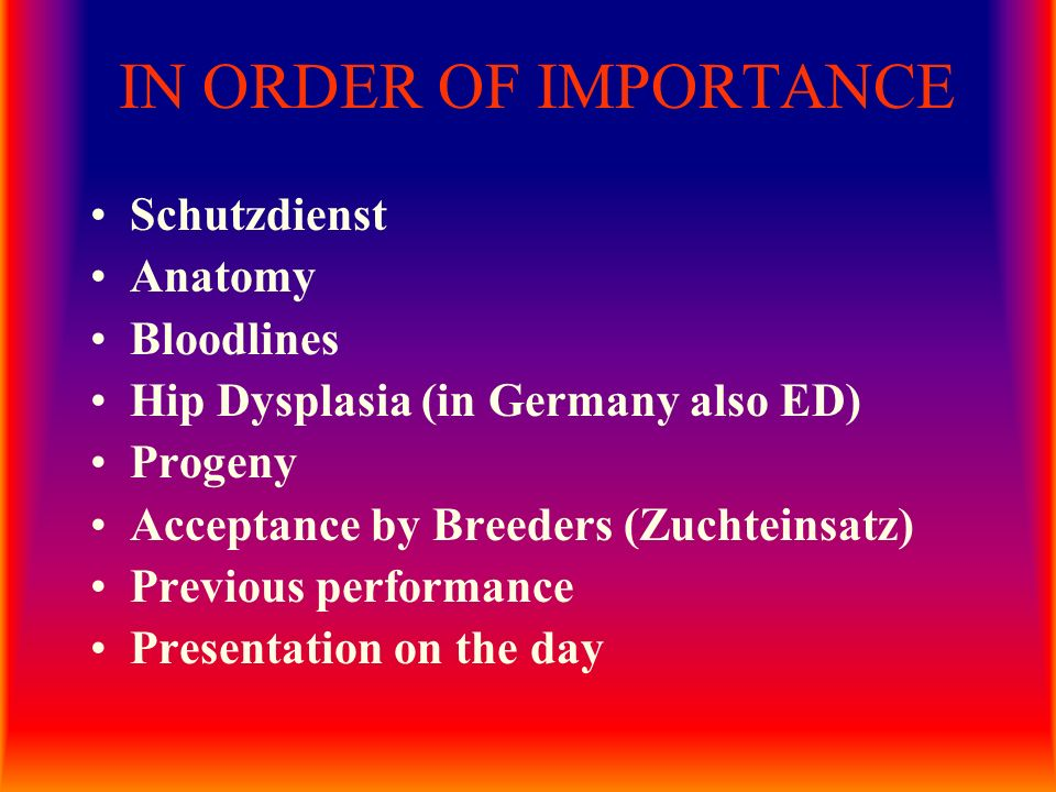 IN ORDER OF IMPORTANCE Schutzdienst Anatomy Bloodlines