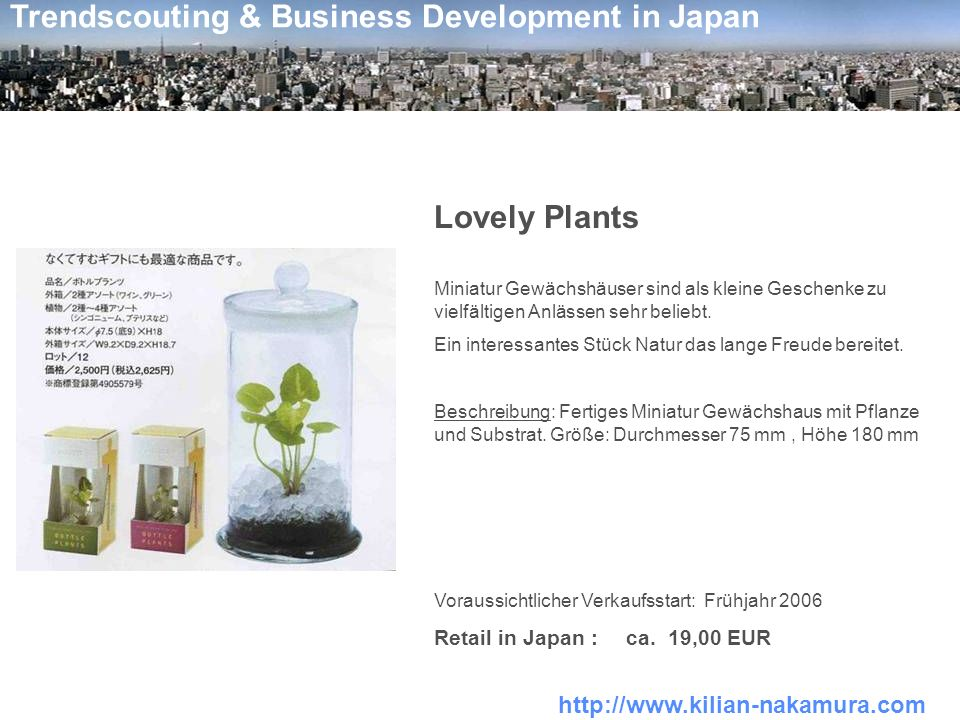 Lovely Plants Retail in Japan : ca. 19,00 EUR