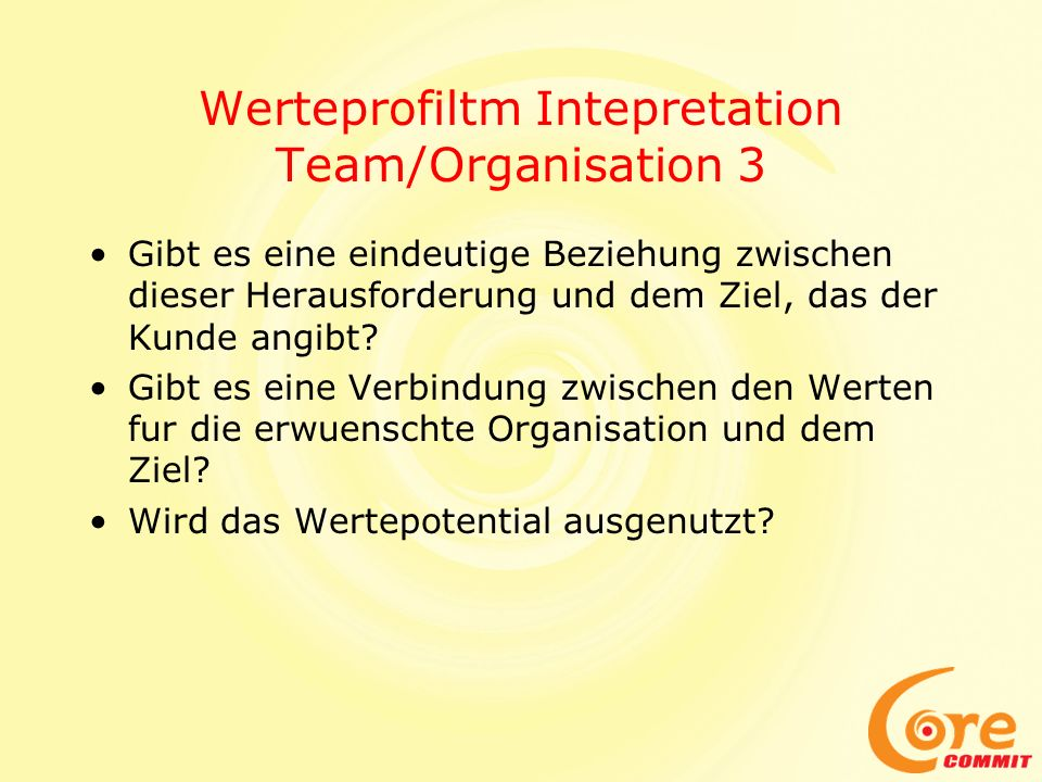 Werteprofiltm Intepretation Team/Organisation 3