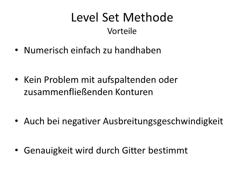 Level Set Methode Vorteile