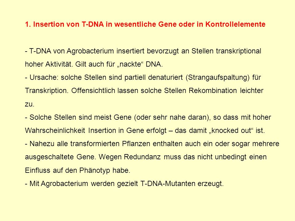 1. Insertion von T-DNA in wesentliche Gene oder in Kontrollelemente