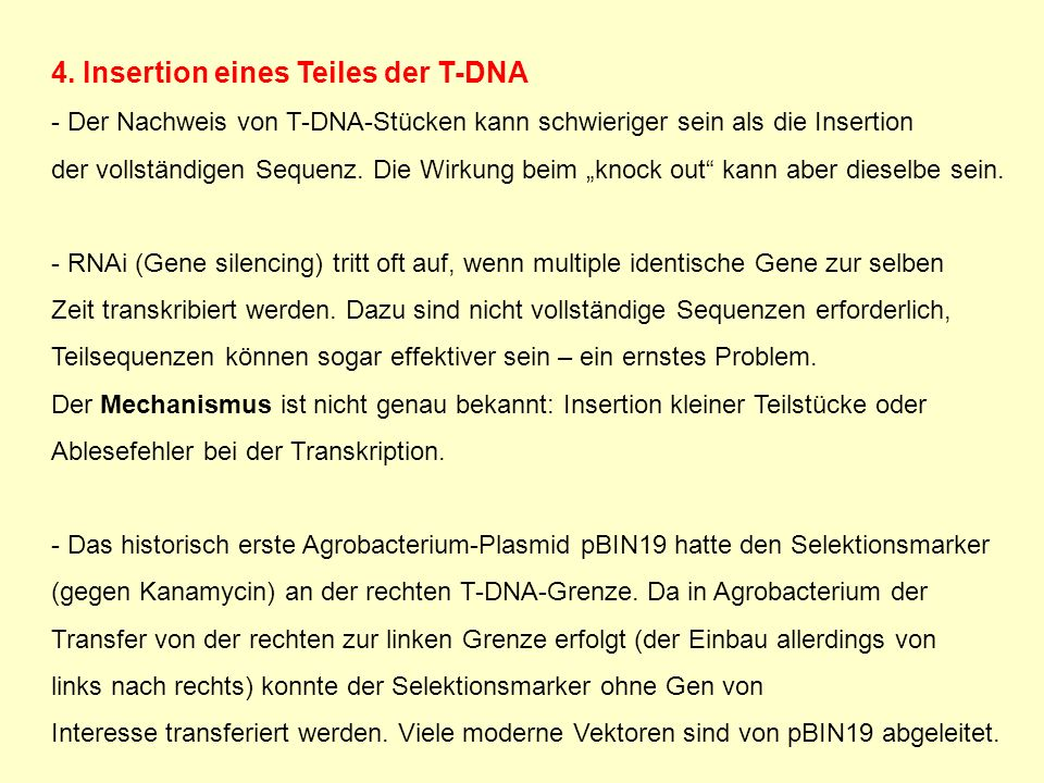 4. Insertion eines Teiles der T-DNA