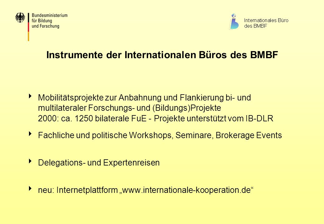 Instrumente der Internationalen Büros des BMBF
