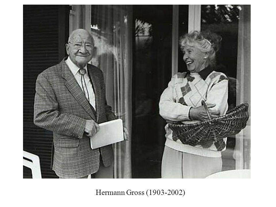 Hermann Gross ( )