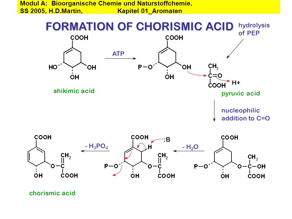 FORMATION OF CHORISMIC ACID