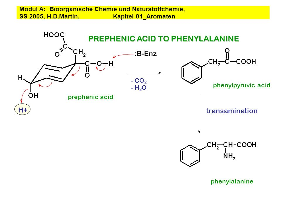 PREPHENIC ACID TO PHENYLALANINE
