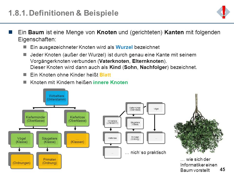 Definitionen & Beispiele