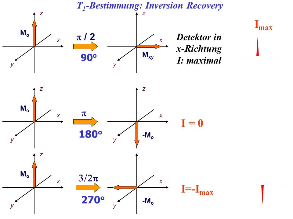 T1-Bestimmung: Inversion Recovery