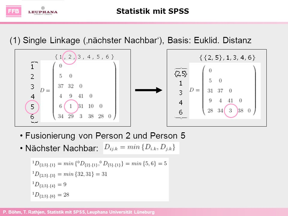 (1) Single Linkage ('nächster Nachbar'), Basis: Euklid. Distanz