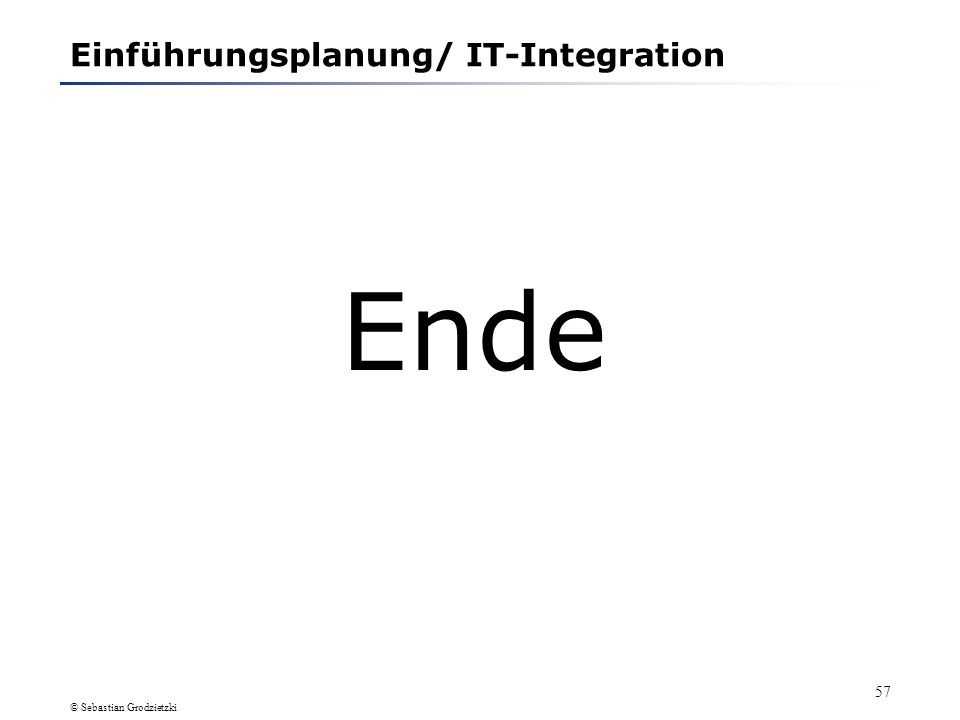 Einführungsplanung/ IT-Integration