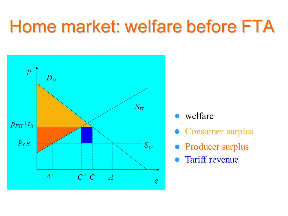 Home market: welfare before FTA