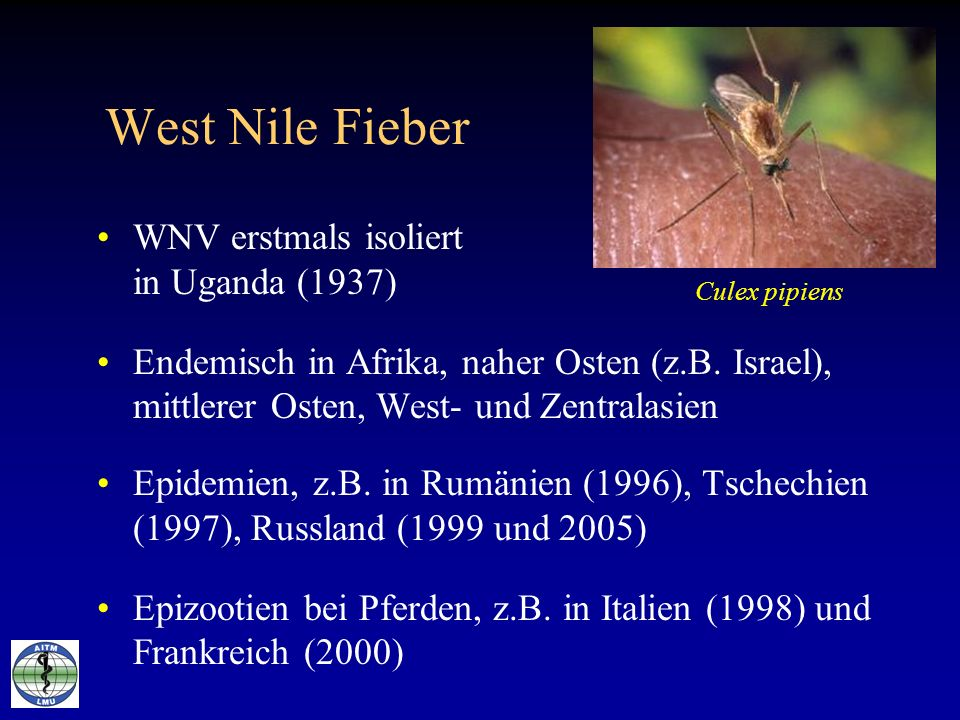 West Nile Fieber WNV erstmals isoliert in Uganda (1937)