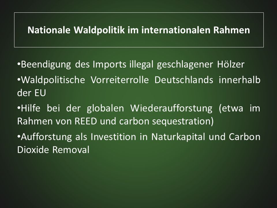 Nationale Waldpolitik im internationalen Rahmen