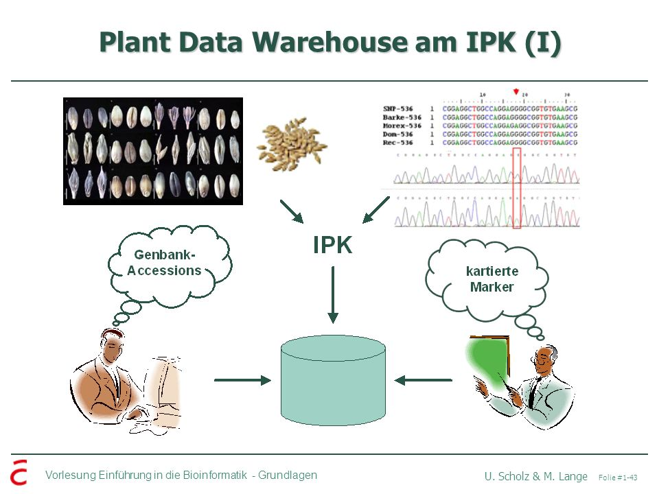 Plant Data Warehouse am IPK (I)
