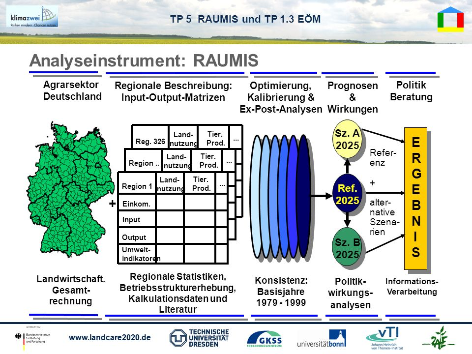 Analyseinstrument: RAUMIS