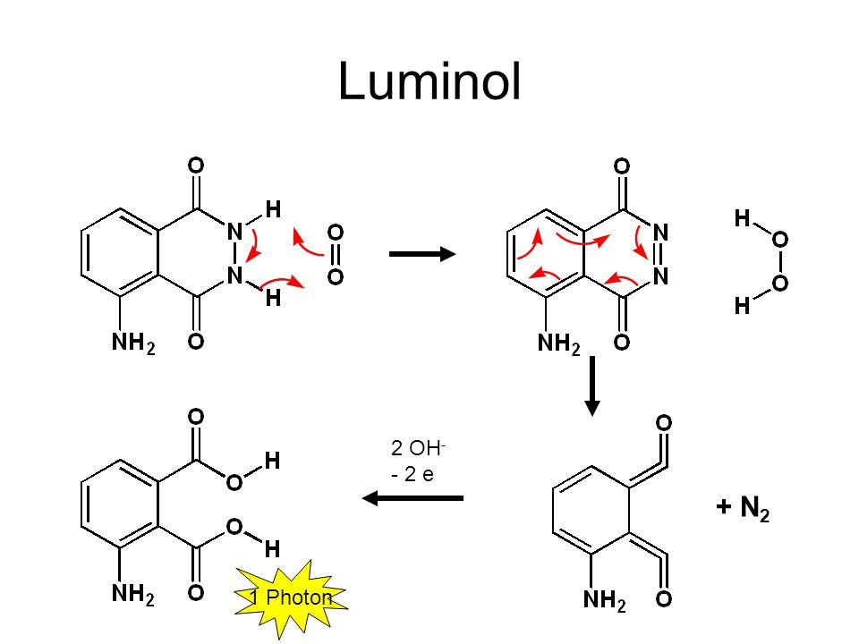 Luminol 2 OH- - 2 e + N2 1 Photon