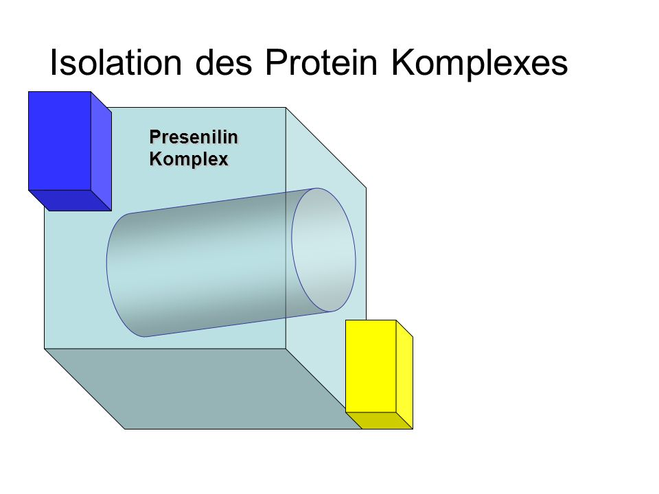 Isolation des Protein Komplexes