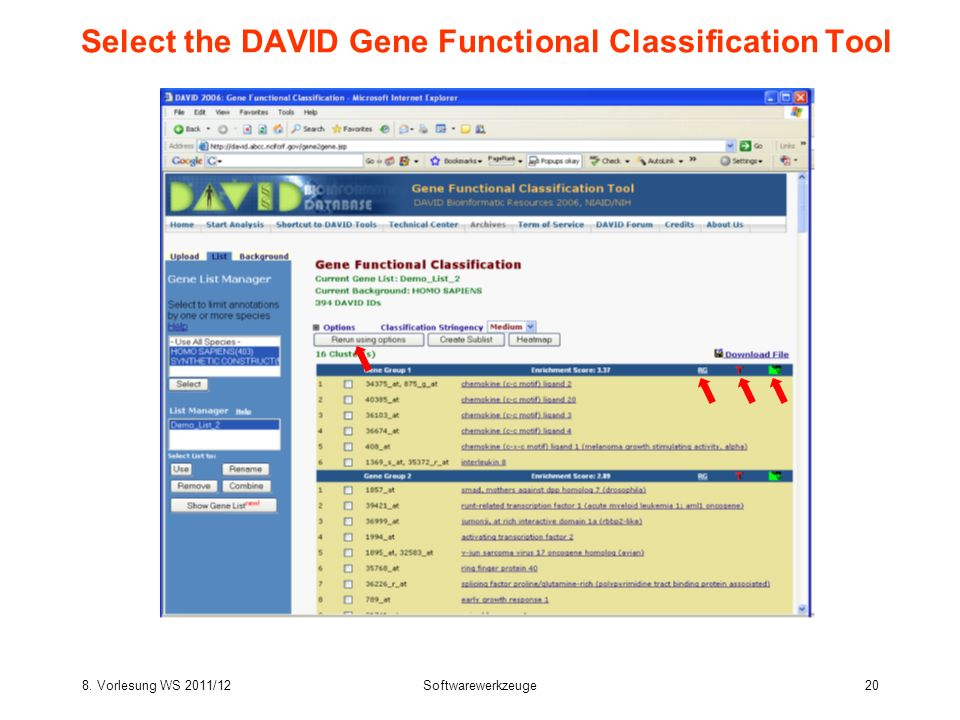Select the DAVID Gene Functional Classification Tool